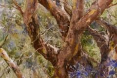 2009 Chris Sullivan 'Gum Tree'